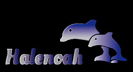HaleNoah.com